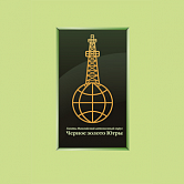 Winner of the Black Gold of Yugra contest, For Social and Economic Partnership